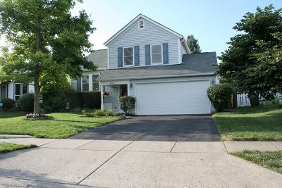 Single Family Home For Sale: 5056 Hidden View Drive