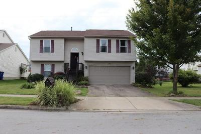 Single Family Home For Sale: 527 Dover Pond Drive