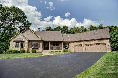 Galena Single Family Home For Sale: 5133 Red Bank Road