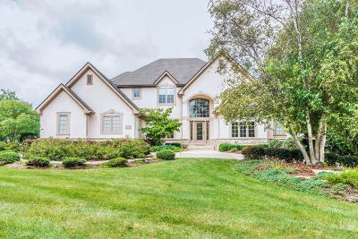 Westerville Single Family Home For Sale: 6730 Lake Trail Drive