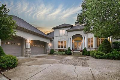 Dublin Single Family Home For Sale: 6989 Rob Roy Drive
