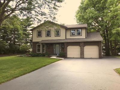 Pickerington Single Family Home For Sale: 13345 Capetown Avenue NW