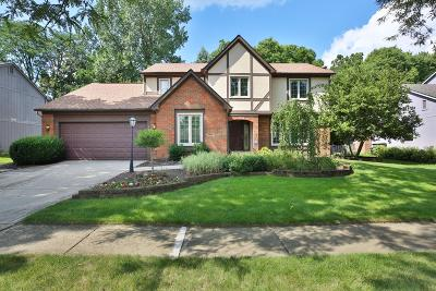 Worthington Single Family Home For Sale: 1072 Woodman Drive