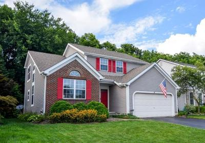 Columbus Single Family Home For Sale: 6040 Wexford Park Drive