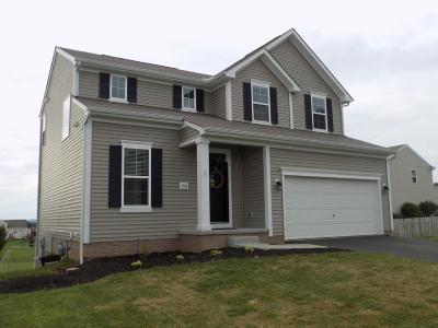 Lancaster Single Family Home Contingent Finance And Inspect: 2318 Zachariah Drive