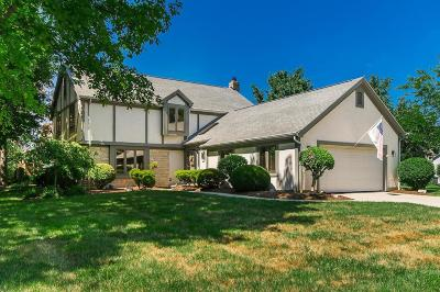 Dublin Single Family Home Contingent Finance And Inspect: 7234 Shady Nelms Drive