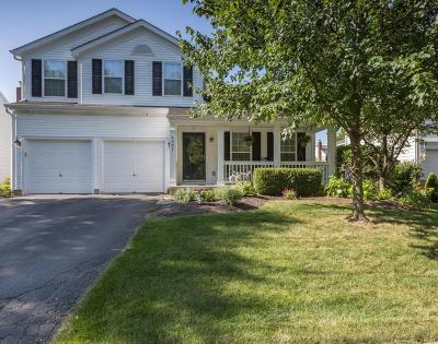 New Albany Single Family Home Contingent Finance And Inspect: 6081 Tetlin Field Drive