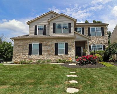 Blacklick Single Family Home Contingent Finance And Inspect: 1140 Sandbar Drive