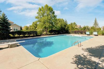 Dublin Single Family Home For Sale: 4171 Bidle Court