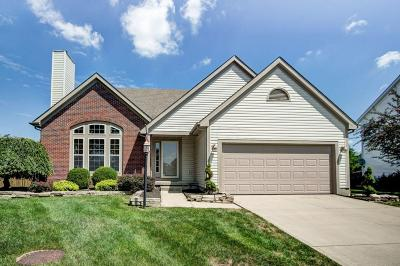 Westerville Single Family Home For Sale: 6566 Danbury Drive