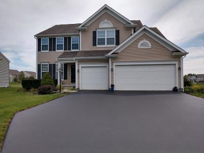 Single Family Home For Sale: 6686 Falling Meadows Drive