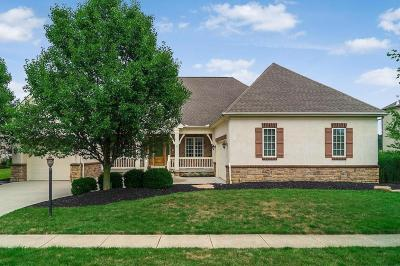 Powell Single Family Home Contingent Finance And Inspect: 4461 Hickory Rock Drive