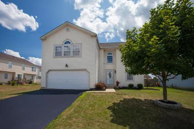 Canal Winchester Single Family Home Contingent Finance And Inspect: 6953 Ellen Boat Lane