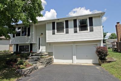 Powell Single Family Home Contingent Finance And Inspect: 1804 Bierstad Drive
