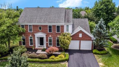 Powell Single Family Home For Sale: 275 Shalebrook Drive