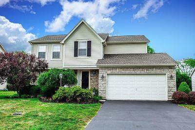 Powell Single Family Home For Sale: 7659 Tree Lake Boulevard