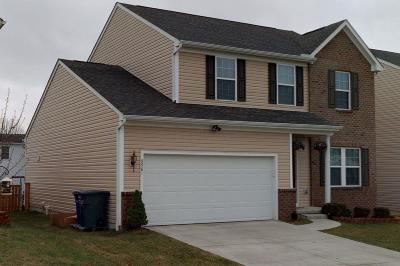 Blacklick Single Family Home For Sale: 6981 Granite Falls Drive