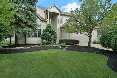 Dublin Single Family Home Sold: 6192 Wynford Drive