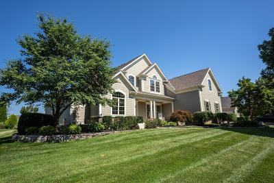 Dublin Single Family Home Contingent Finance And Inspect: 6556 Ballantrae Place