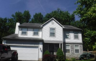 Gahanna Single Family Home For Sale: 4643 Winery Way
