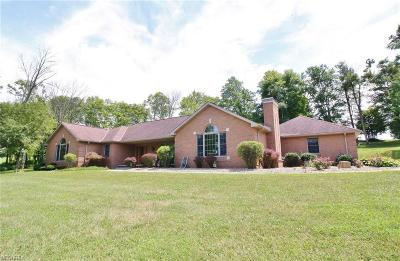 Nashport Single Family Home For Sale: 5542 Covertview Drive