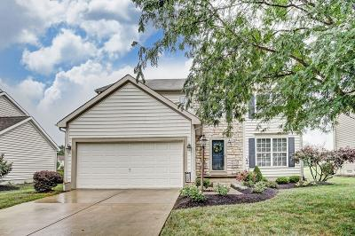 Powell Single Family Home For Sale: 4356 Scioto Parkway