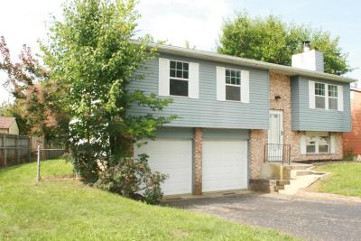 Hilliard Single Family Home Contingent Finance And Inspect: 5695 Rachel Court