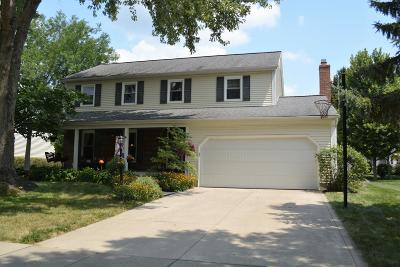 Dublin Single Family Home For Sale: 6928 Ernest Way