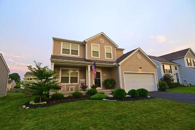 Grove City Single Family Home For Sale: 3849 Wolf Creek Road