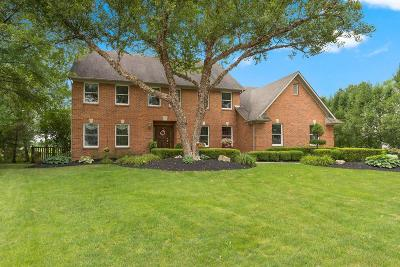 Powell Single Family Home For Sale: 193 Muladore Drive