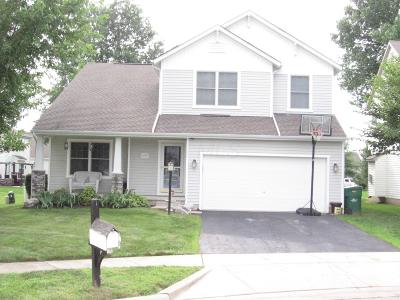 Blacklick Single Family Home For Sale: 1105 Willow Brook Crossing Court