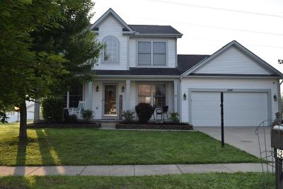 Grove City Single Family Home For Sale: 1248 Great Hunter Drive