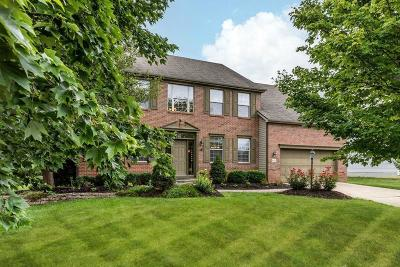 Canal Winchester Single Family Home For Sale: 8223 Shady Maple Drive