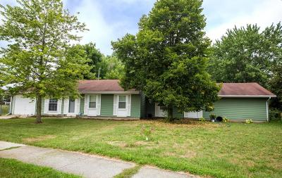 Single Family Home For Sale: 746 Fern Drive