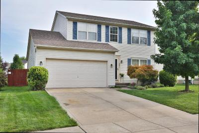 Blacklick Single Family Home Contingent Finance And Inspect: 381 Grandlin Park Drive