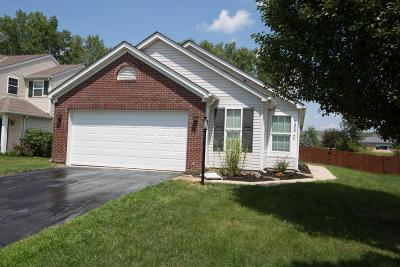 Blacklick Single Family Home For Sale: 7950 Birch Creek Drive