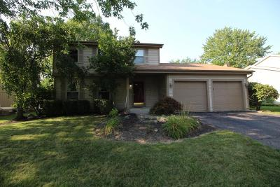 Dublin Single Family Home For Sale: 6288 Valley Stream Drive
