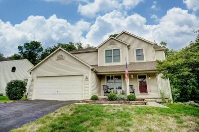 Newark Single Family Home Contingent Finance And Inspect: 2478 Crestview Woods Drive