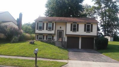 Reynoldsburg Single Family Home For Sale: 341 Instone Drive