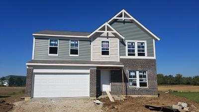 Canal Winchester Single Family Home For Sale: 7456 Winding Path Court