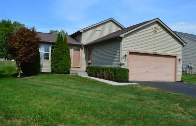 Grove City Single Family Home Contingent Finance And Inspect: 2593 Admiral Drive