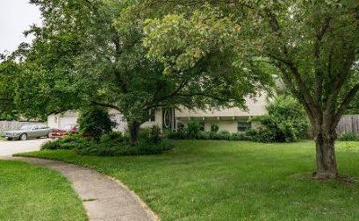 Gahanna Single Family Home For Sale: 256 White Swan Court