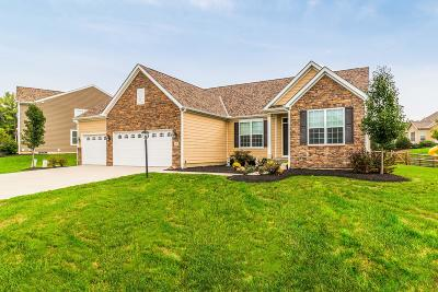 Pataskala Single Family Home For Sale: 1696 Forest View Drive