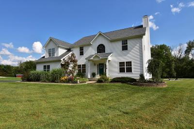 Hebron Single Family Home For Sale: 778 Beaver Run Road SE