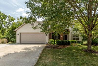 Pickerington Single Family Home Contingent Finance And Inspect: 906 Dunvegan Circle