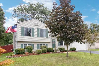 Grove City Single Family Home Contingent Finance And Inspect: 2574 Creekwillow Place