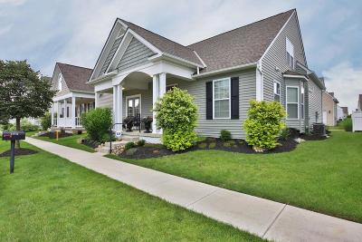 Blacklick Single Family Home Contingent Finance And Inspect: 1072 Dobbs Avenue