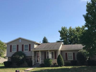 Single Family Home For Sale: 263 Leawood Drive