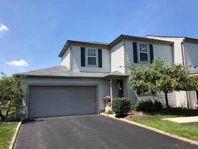Blacklick Condo Contingent Finance And Inspect: 141 Macfalls Way #14A