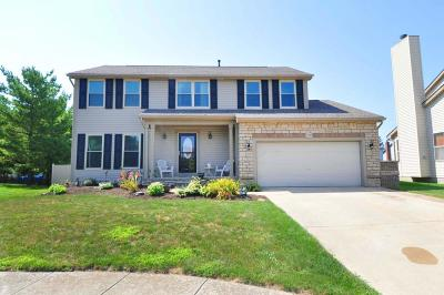 Hilliard Single Family Home For Sale: 2389 Stewart Hollow Court